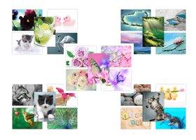 Lot vari/é de 50 cartes postales num/éro 1 enveloppes non comprises Multipack de 50 cartes postales photographiques diff/érentes