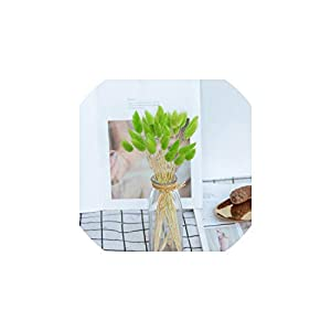 V-K-YA 20Pcs Natural Dried Flowers Colorful Bouquet for Home Wedding Decoration Rabbit Tail Grass Bunch,3 14