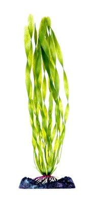 - Corkscrew Val Plant Large Aqua-Plant Sinkers (Pack of 2)