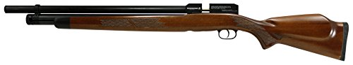Gamo Winchester Big Bore 70-35 PCP Air Rifle