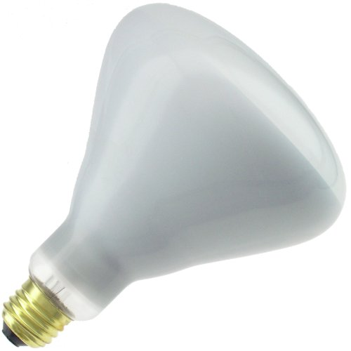 Shatter Resistant Bulb Lamp (Industrial Performance 250 Watt BR40 Shatter Resistant Clear Heat Lamp)