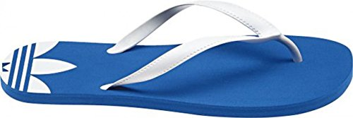 Blue Sun Infradito Blue Sun Infradito Adidas Sun Blue Infradito Adidas Infradito Adidas Sun Adidas Blue qtHfIg