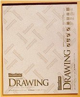 Bienfang Lightweight Drawing Paper Pad, 11 X 14 inches, 55 lb., White, 50 Sheets (Recycled Newsprint Drawing Paper)
