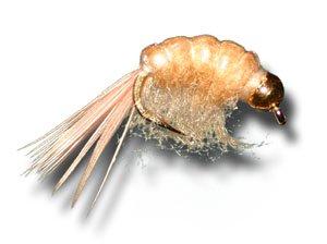 BH Scud - Tan Fly Fishing Fly