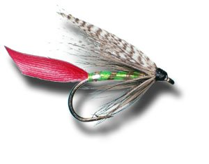 Grizzly King濡れFlyフライ釣りフライ Size 16 - 6 Pack  B00KD81HUG