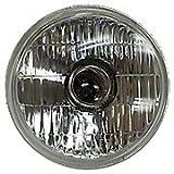 6 Volt Sealed Beam Bulb