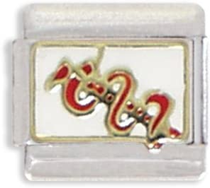 Clearly Charming Medical Staff Italian Charm Bracelet Link