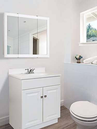 Design House 531731 Wyndham Ready-To-Assemble 2 Door Vanity, White, 24-Inches Wide by 31.5-Inches Tall by 18-Inches Deep - 24 in. W x 18 in. D x 31. 5 in. H Plenty of storage for toiletries to keep your countertop free of clutter Concealed hinges for a clean look - bathroom-vanities, bathroom-fixtures-hardware, bathroom - 31lISrh5TaL -