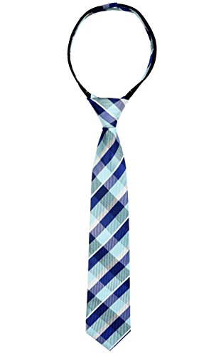 17 Inch Zipper Ties (Spring Notion Boys' Pre-tied Woven Zipper Tie X-Large Blue Checkered)