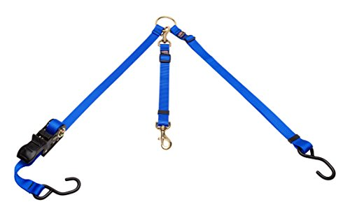 Cetacea Pet Truck Bed Tether with Ratchet Tightening Hardware, One Size, Blue by Cetacea