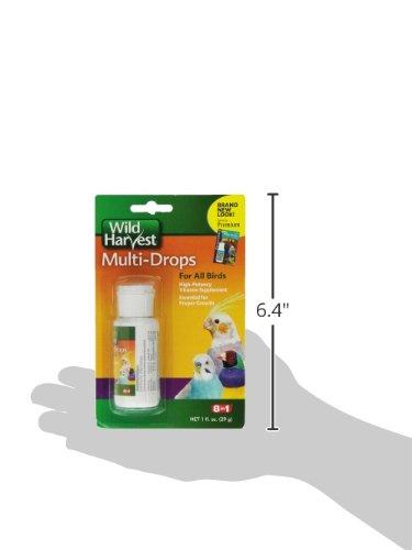 United Pet Group D13123 Bird Multi Drops Vitamin Supplement, 1-Ounce