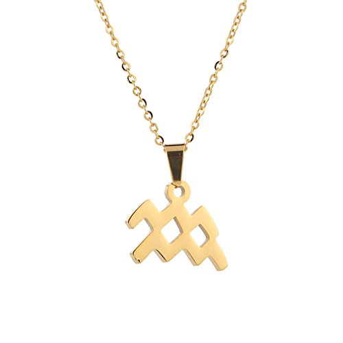 - JDXN Stainless Steel 12 Constellation Pendant Necklace Birthday For Women Girls Jewelry (Golden ♒️ Aquarius, January 20-February 18)