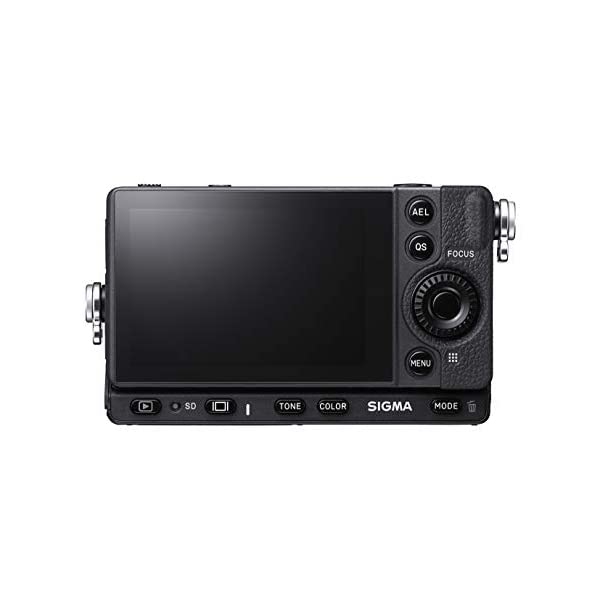 RetinaPix Sigma fp Mirrorless Digital Camera