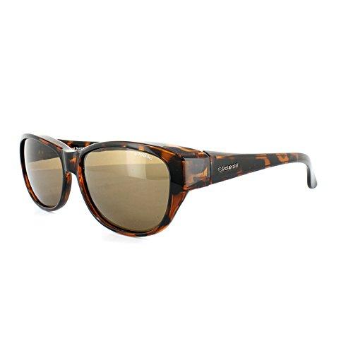 Polaroid lunettes de soleil Marron P8407.0BM.61IG (Diameter lens: 61 mm)
