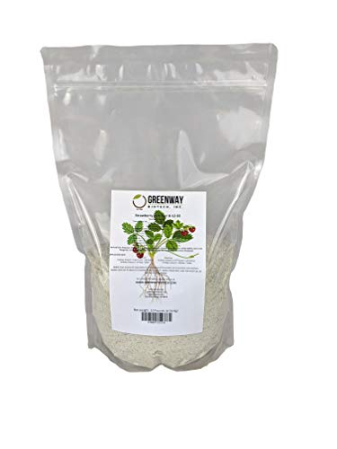 Strawberry Fertilizer 8-12-32 Powder 100% Water Soluble Plus Micro Nutrients and Trace Minerals Greenway Biotech Brand 10 Pounds (Makes 2000 Gallons)