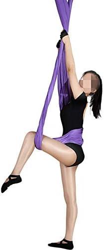 ハンギングヨガスリング ホームロングヨガハンモック空中反重力マイクロゴムバンドヨガストレッチベルト/パープル安全バックルと姿勢ガイド 家庭用 (色 : 紫の, Size : 280x500cm)