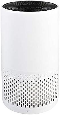 Purificador de aire táctil con filtros HEPA verdadero y carbón ...