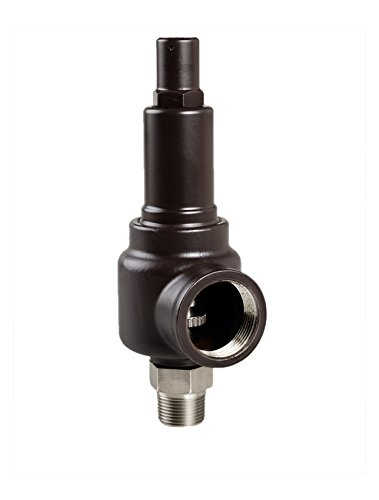 250 psi AQUATROL 742GH-M2L-250 Series 742 Safety Relief Valve 1-1//2 Inlet x 2 Outlet Size 1-1//2 Inlet x 2 Outlet Size