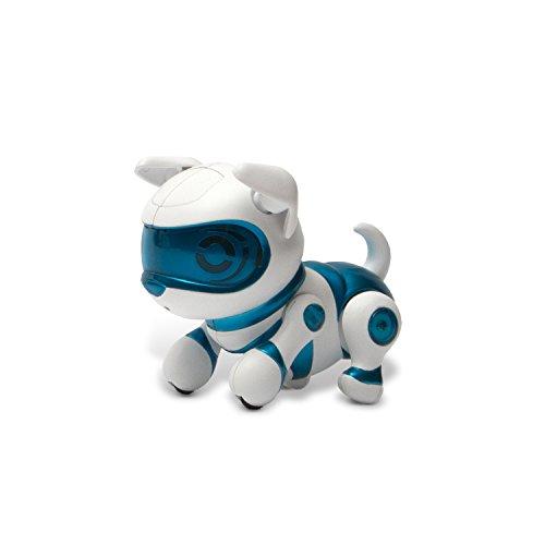 tekno newborn puppy