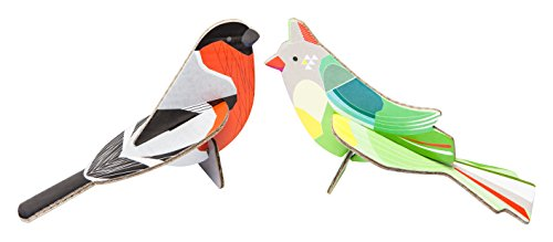 Pop Out Card: Finches