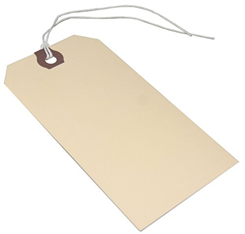 Amram Strung Shipping Tags 4 3/4 Inches X 2 3/8 Inches, 100 Tags, Manila with Reinforced Eyelet.