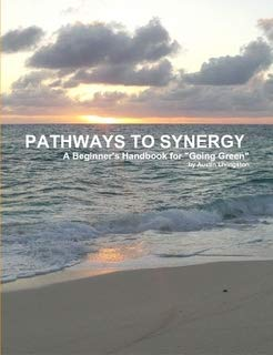 PATHWAYS TO SYNERGY ()