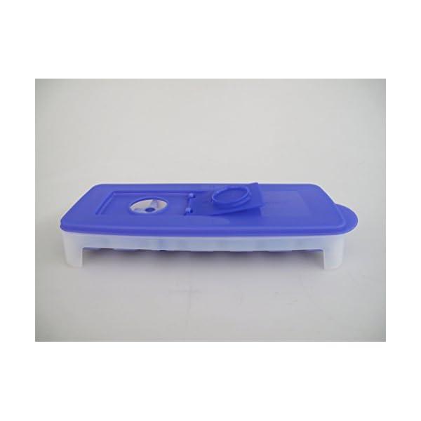 Tupperware, contenitore da congelatore per creare cubetti di ghiaccio, viola e bianco, G29 31087 5 spesavip