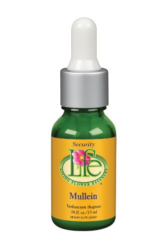Living Flower Essences Mullein, 0.5 Fluid Ounce