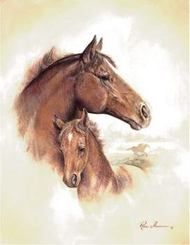 (4 Horse Art Prints Mare Pictures Foal Posters Home Decor Interiors)