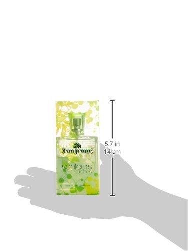 Eau Jeune Senteurs Fraiches Agua de colonia para mujer, verde, 75 ml: Amazon.es: Belleza