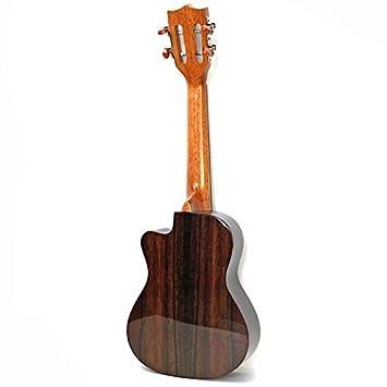 NING-MENG Ukulele Acabado Brillante Palo de Rosa Guitarra Eléctrica de 23 Pulgadas 4 Cuerdas Falta Ángulo Ukelele Con Pickup Eq: Amazon.es: Instrumentos ...