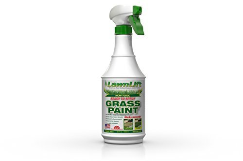 Lawnlift Pre-Mixed Grass Paint 32 Ounce Ready to Spray, No Mixing, 32 oz., Green (Best Evergreen Shrubs For Dry Shade)