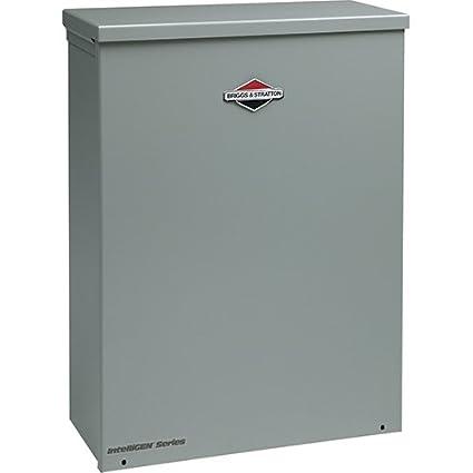 Amazon.com: Briggs & Stratton 71045 toda la casa air-cooled ...
