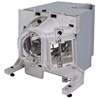 Replacement For OPTOMA X515 LAMP & HOUSING Projector TV Lamp Bulb