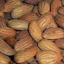 almonds-shelled-raw-10-lbs-bulk-by-its-delish