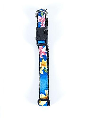 Maui Dog Wear, Dog Collars (Medium 3/4