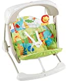 Fisher-Price Rainforest Friends Take-Along Swing And Seat.