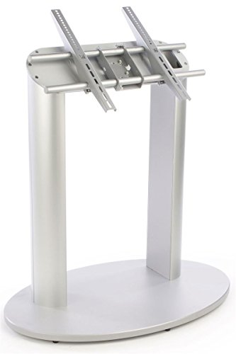 Displays2go Angled TV Stand, Floor Standing, Supports 42 to 60 Inch Flat Panel Screens – Silver (DRMNTST)