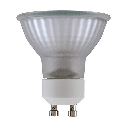 50 Dollar Led Light Bulb