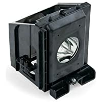 BP96-00826A - Lamp With Housing For Samsung HLR6167W, HLR5667W, HLR4667W, HLP6163W, HLR5067W TVs