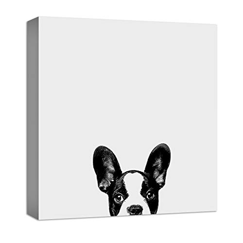 NWT Canvas Wall Art Curious Pets Dog Black and White Painting Artwork for Home Prints Framed - 12x12 inches