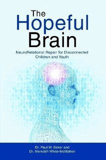 The Hopeful Brain: NeuroRelational Repair for Disconnected Children and Youth