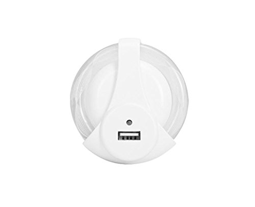 Amazon Com Globe Electric 8922901 1out 1 Outlet Usb Night Light 2