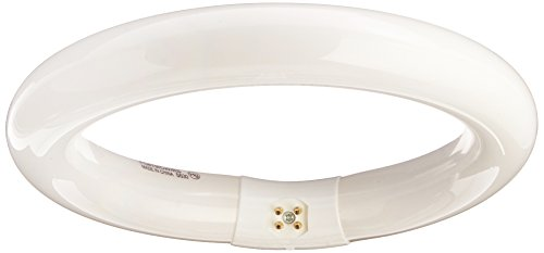 Satco 02950 - FC6T9/WW/RS S2950 Circular T9 Fluorescent Tube Light - Avant Bulb
