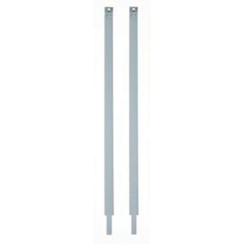 Eckler's Premier Quality Products 25-243025 -67 Corvette Gas Tank Straps, Stainless ()