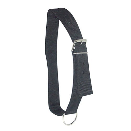 Intrepid International Nylon Horse Tie Collar