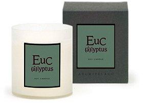 Archipelago Botanicals AB Home Soy Candles Eucalyptus