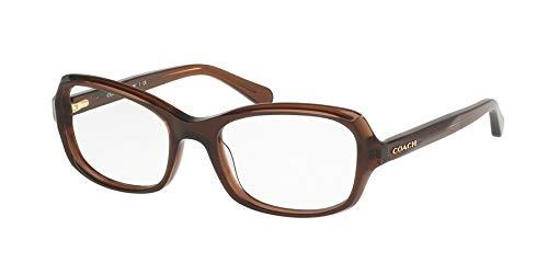 COACH Women's 0HC6097 Dark Brown One Size (Coach Women Frames Eyeglasses)