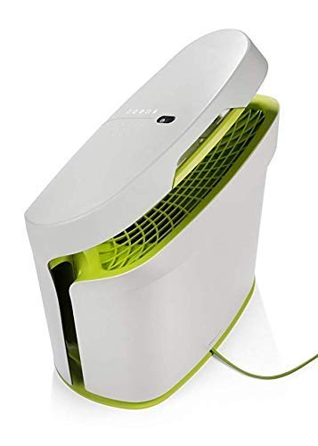 RabbitAir BioGS 2.0 Ultra Quiet HEPA Air Purifier (SPA-625A Tone Leaf)