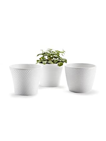 Amazon Set Of 3 Pieces 45 Ceramic Embossed Small White Flower
